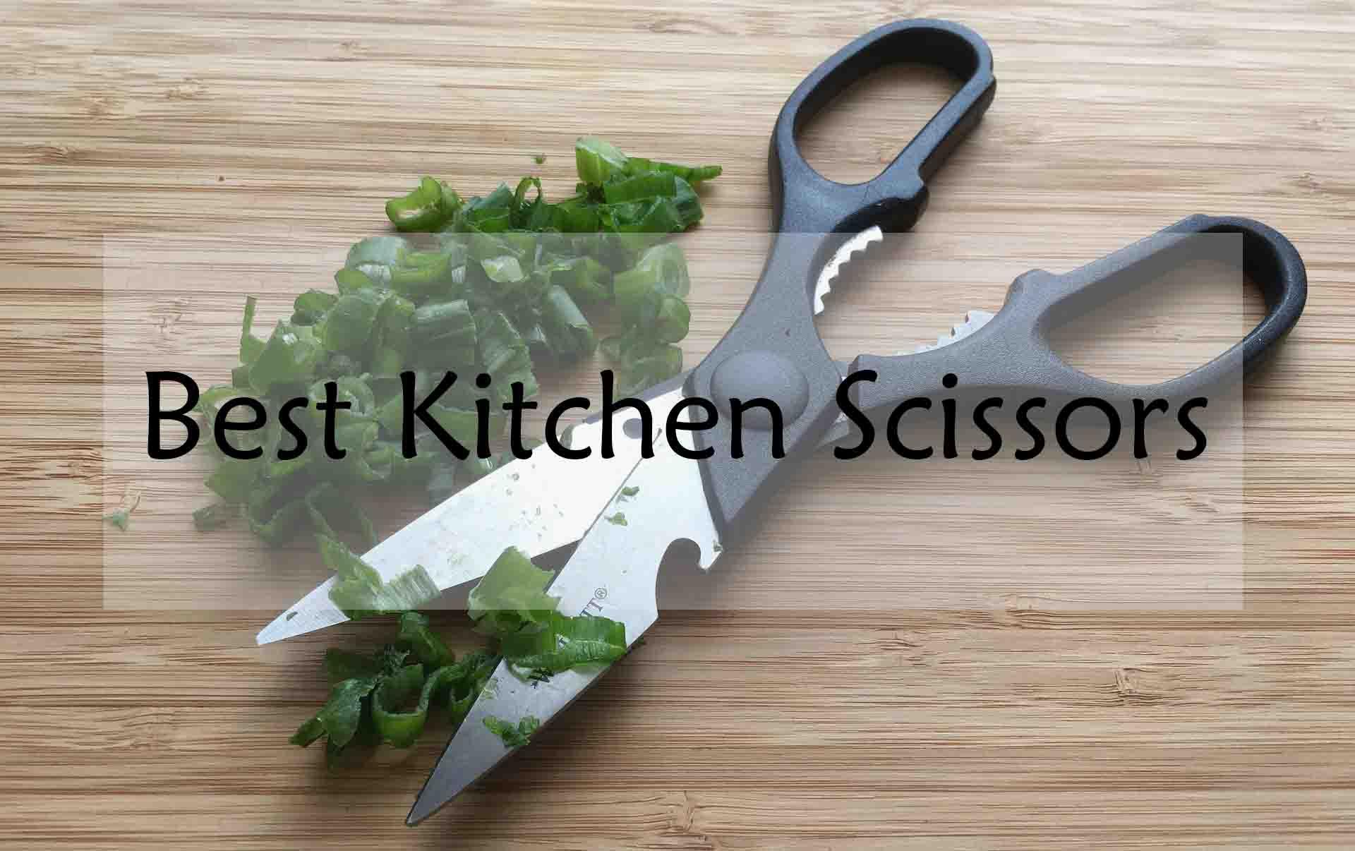 Best Scissors For Kitchen